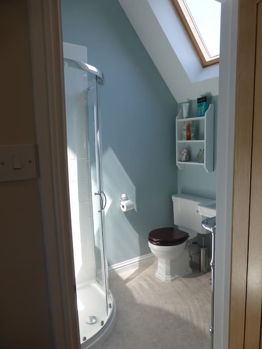 Ensuite bathroom with shower, toilet and basin