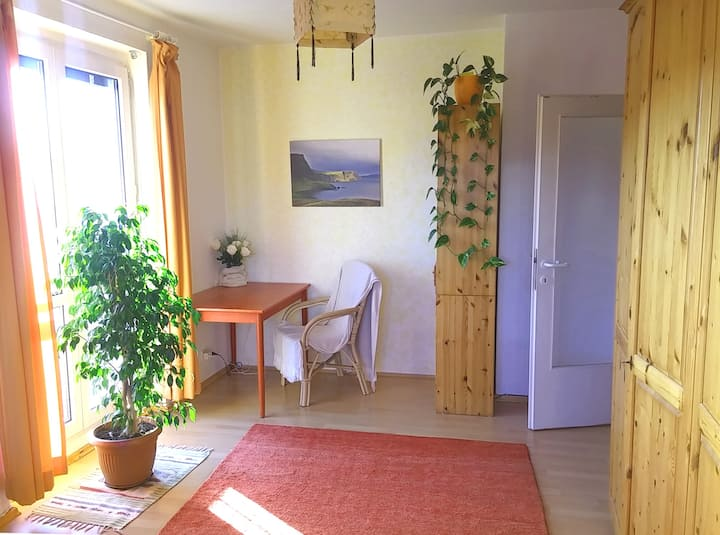 Cosy and bright studio flat in the center of Linz