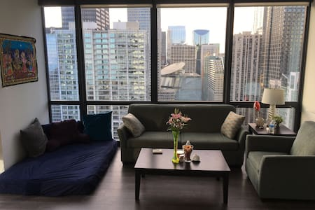 Cozy shared space in downtown apt w/ grt amenities - Chicago