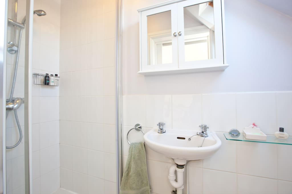 En suite shower room with complimentary shower gel, shampoo and conditioner.