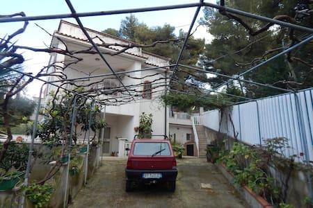 Casa nel Cuore del Gargano - San Menaio - Apartment