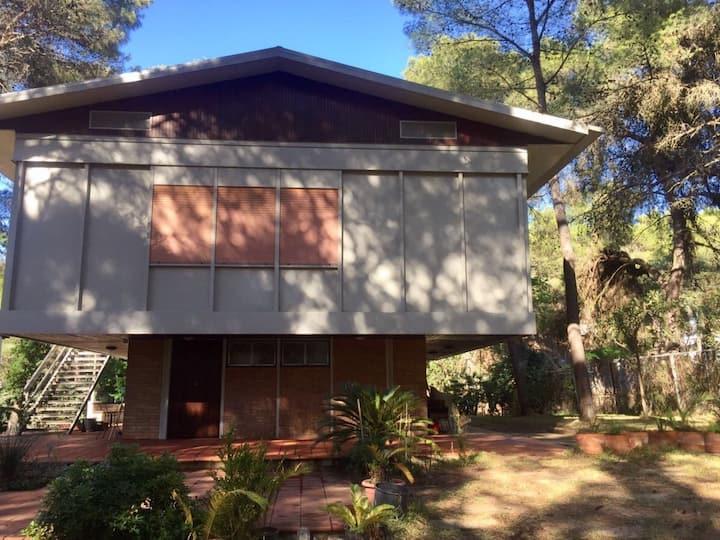Villa in pineta con ampio giardino