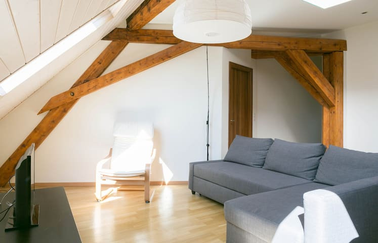 Modern & Cozy Private Room 9m from the Center - Geneve - Huoneisto