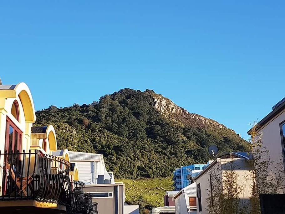 View of the Mt from the Mt town