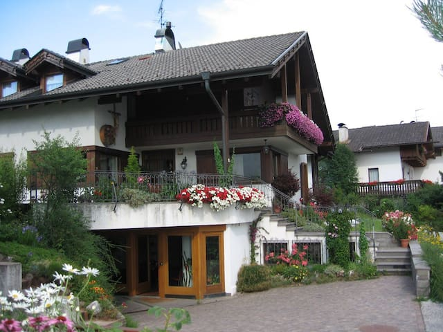 camera doppia in b&b a Cavalese - Cavalese - Bed & Breakfast