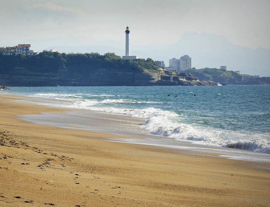 Location Appartement Bayonne Anglet Biarritz