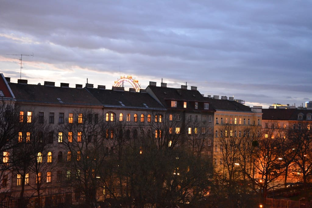 """the view from the flat to the park and in the background the famous """"riesenrad"""" at prater"""