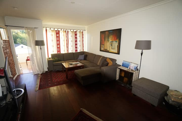 Apartement in Drammen close to the main city
