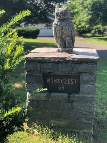 Wyndcrest Apartment #1: The Yellow Owl