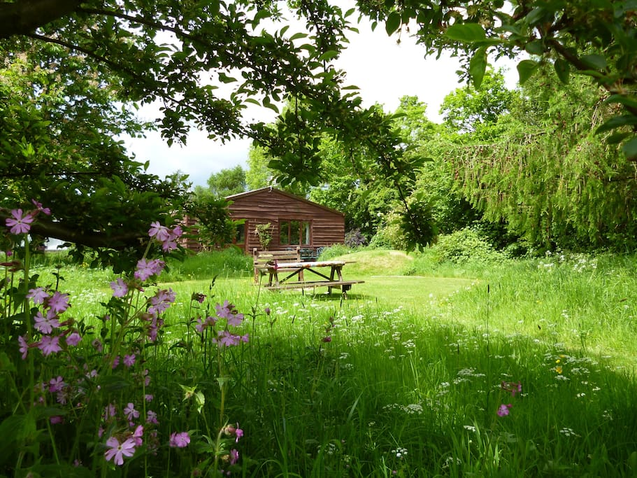 Sit in your own meadow with wild flowers everywhere and enjoy a barbecue or fire .