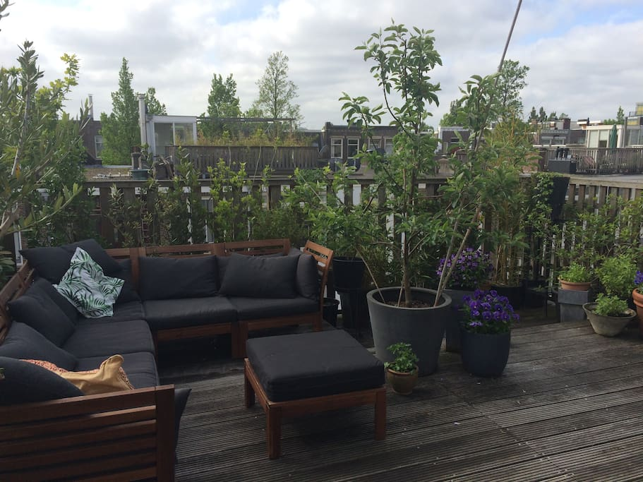 Roof terrace on the south.