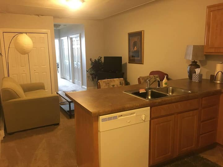 #3 DOWNTOWN Apartment