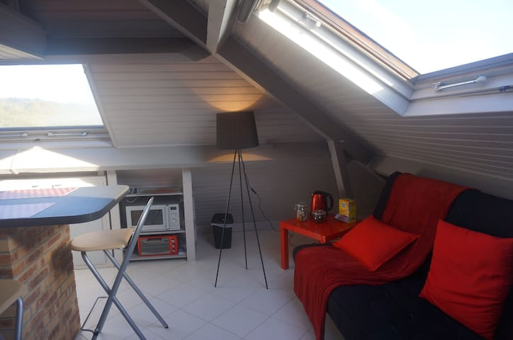 Pleasant studio near Enghien and Paris in 40 mn - Soisy-sous-Montmorency - Apartamento