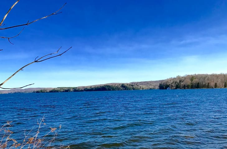 Beautiful Hidden Valley Muskoka Lake/Ski Views