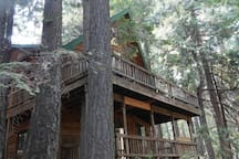 Two decks overlooking national forest