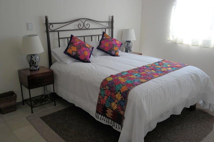 ¡La Lupita Rosa: en el corazón de Coyoacán!