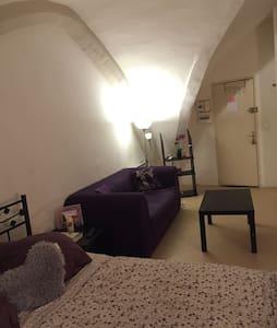 Studio dans centre de Montpellier - Taussac-la-Billière - Pis