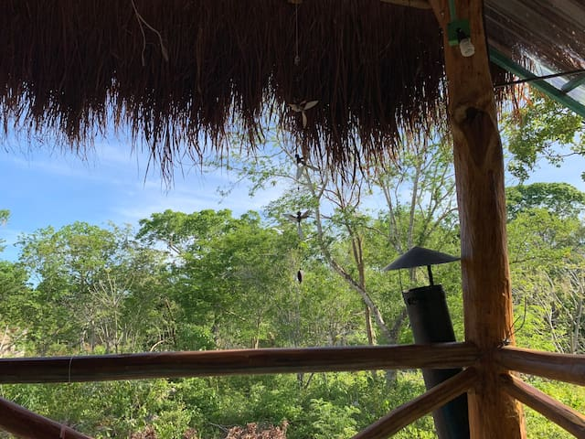 Malinche Cafe in Coba Tulum, private cabin