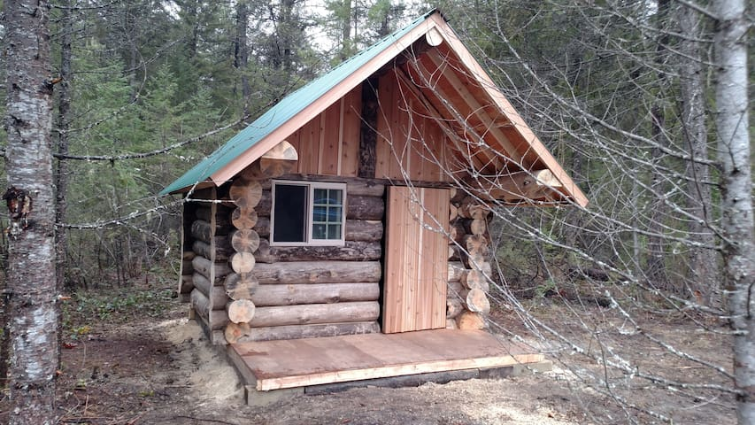 Remote River Cabin w Fishing and Hiking Access!