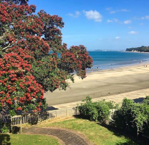 Beachfront Takapuna