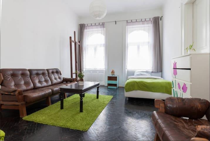 Buda riverside apartment - Budapest - House