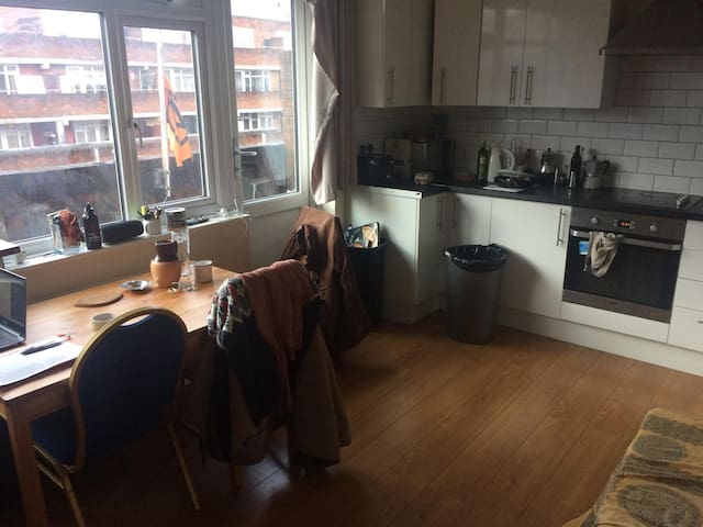Lovely room in cozy flat close to central London