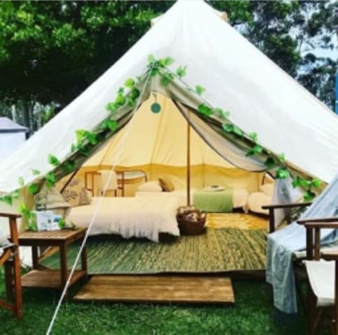South Coast Luxury Camping Set Up For You! Pambula