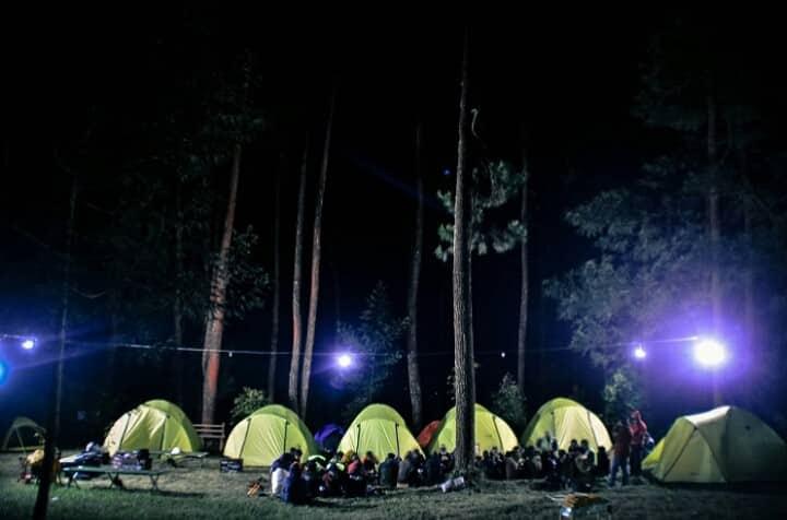 WAPITT Camping Ground ditengah hutan pinus