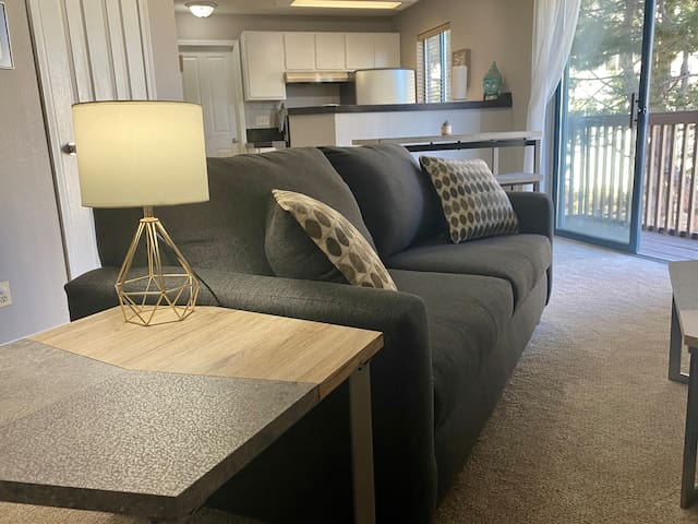 King Bed - Cozy Apartment! Mountain View & Patio!