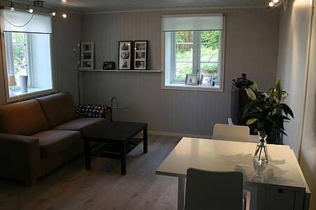 Lys og pen leilighet sentralt - Apartment