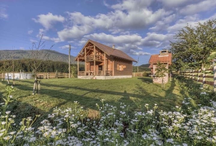 House for 6+3 pers with pool in Smiljan R53732