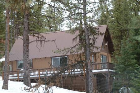 Off grid cabin in woods