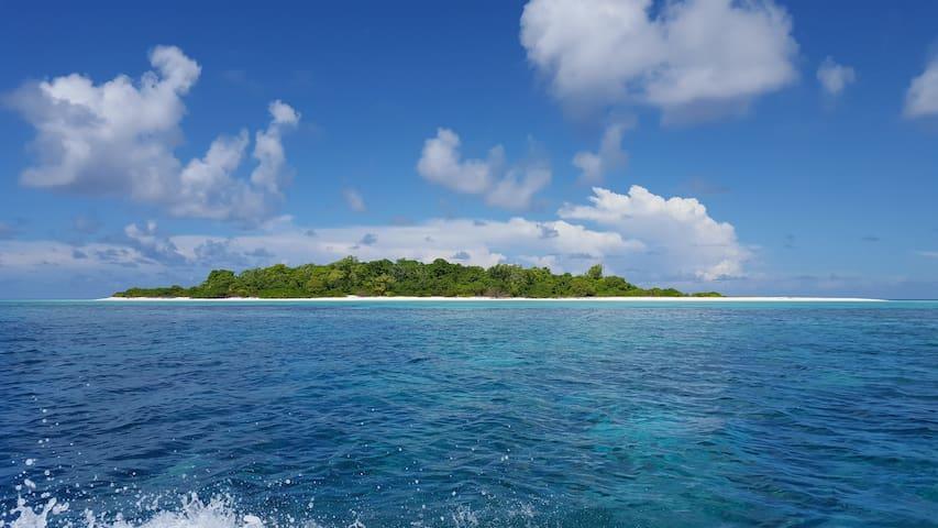Explore Dhevvadhoo-experience island life