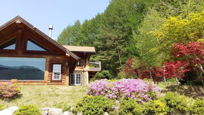 blueberry hill - Bongpyeong-myeon, Pyeongchang-gun - Hus