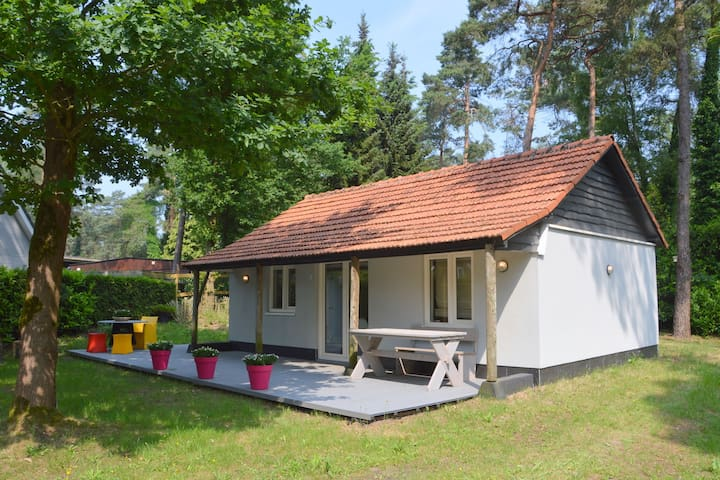 Bungalow situated in the forests of Oisterwijk near the Kampina and the Efteling