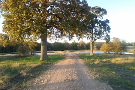 Round Top Ranchita  - 4 miles from the Square - House