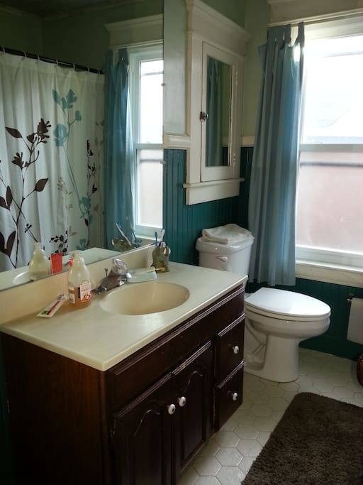 This bathroom has it all: a sink! a toilet! a tub! Who could ask for more?