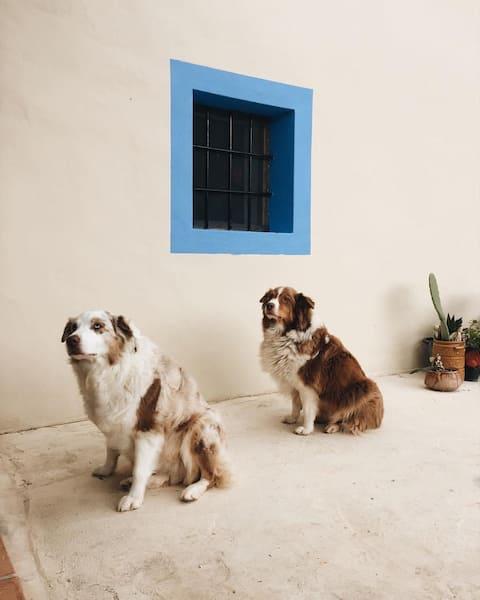 Original Ibizan Country House Room