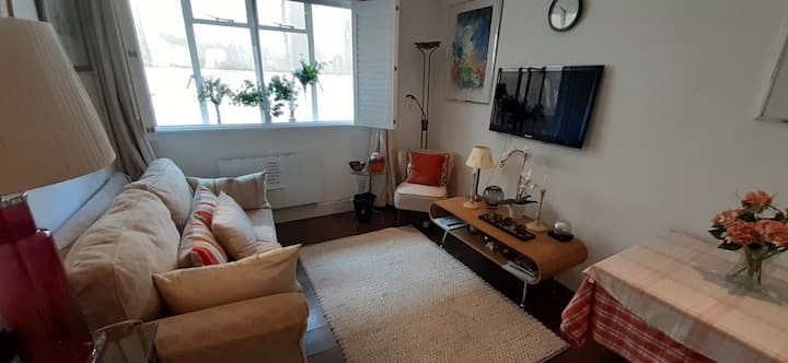 1 Bedroom Flat, Chelsea