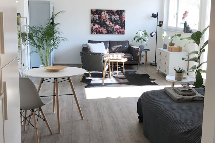 Modern and Cosy studio