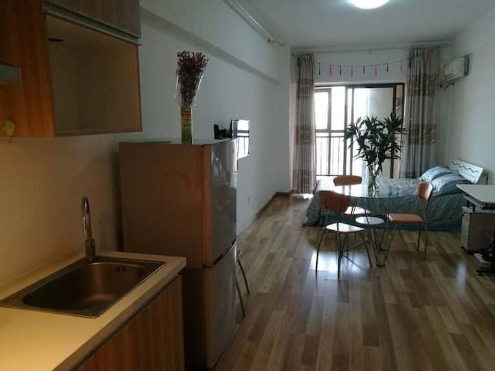 步行街新市口滨江公园附近干净公寓