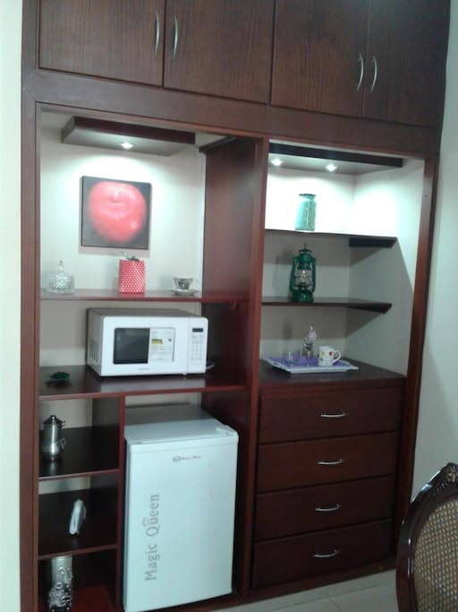 Microwave and Small Fridge Available in Studio