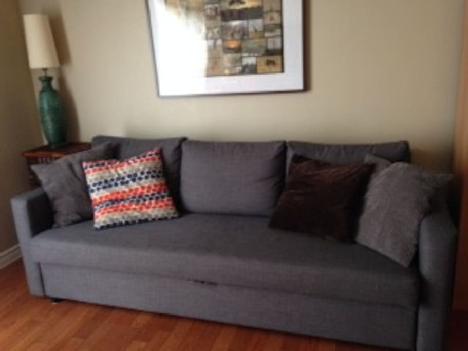 pull out couch in main floor living room
