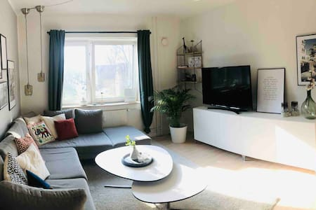 Luxurious and bright apartment for rent!