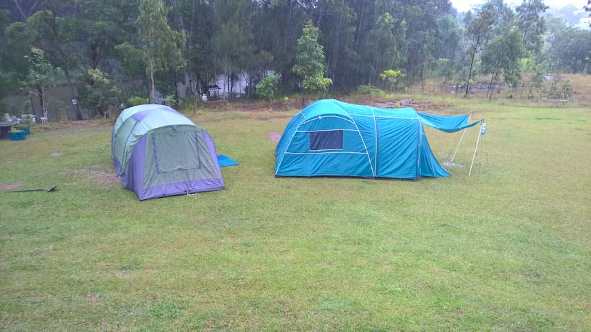 Camping on the Sunshine Coast - Yandina - Tent