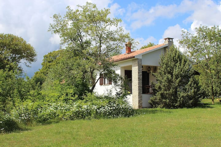 Vacation House Marko - Pula - Talo