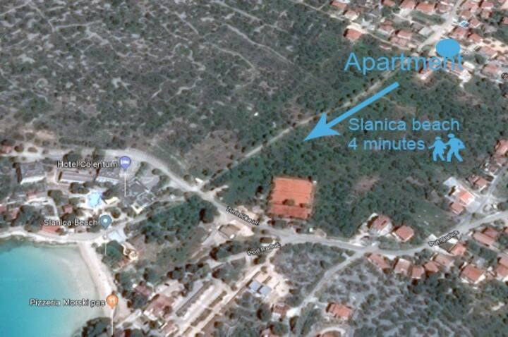 Apartment Slanica 2+2 Murter ID 813