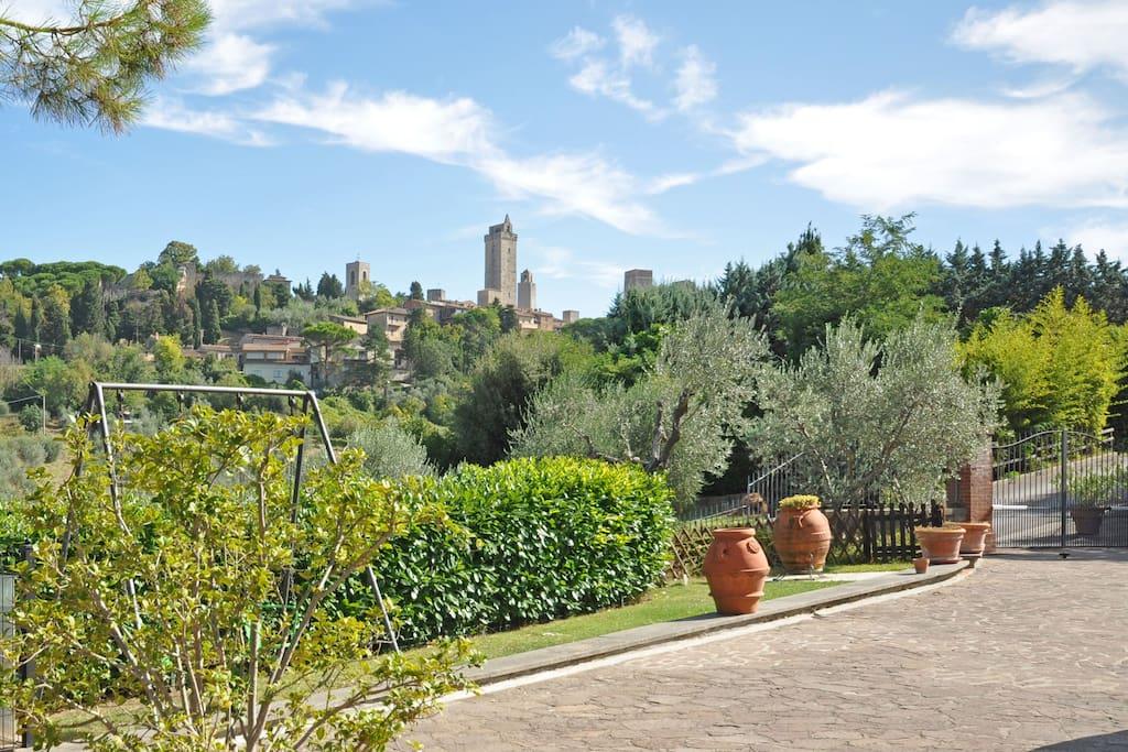 Garden, Outdoor, Scenic View