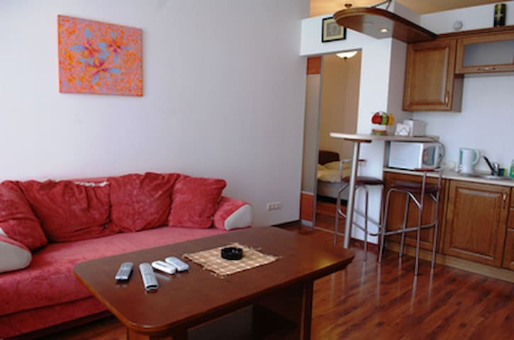 1-bedroom apartment on 16a Mykhailivska st.