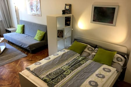 Newly renovated flat in city center - Prague